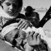 Roots of the Conflict: Palestine's Nakba in the Larger Arab 'Catastrophe